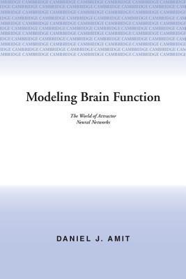 Modeling Brain Function