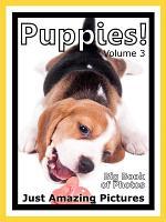 Just Puppies  vol  3 PDF