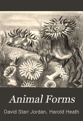Animal forms: a text-book of zoology
