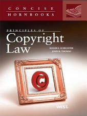 Principles of Copyright Law (Concise Hornbook Series)