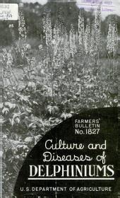 Culture and diseases of delphiniums