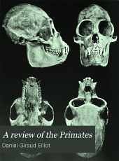 A review of the Primates: Volume 2