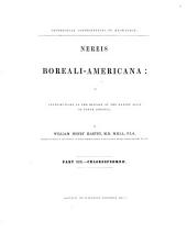 Nereis Boreali-Americana: Or Contributions to the History of the Marine Algæ of North America. Chlorospermeæ, Part 3