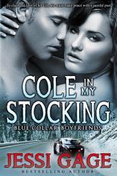 Cole in My Stocking: Blue Collar Boyfriends 2