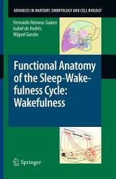 Functional Anatomy of the Sleep-Wakefulness Cycle: Wakefulness