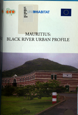 Mauritius  name of Town  Urban Profile  Black River PDF