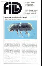 Ips Bark Beetles in the South PDF