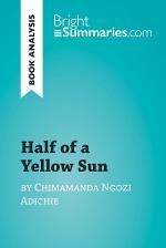 Half of a Yellow Sun by Chimamanda Ngozi Adichie (Book Analysis)