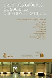 Droit des groupes de sociétés: Questions pratiques