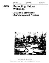 Protecting natural wetlands a guide to stormwater best management practices.