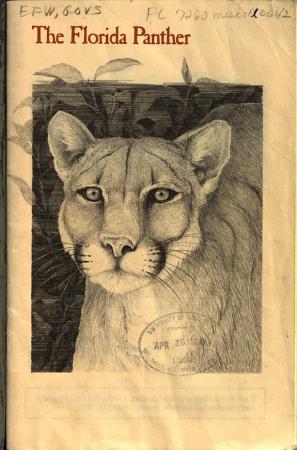 The Florida Panther PDF