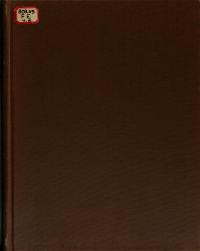 Information Service PDF