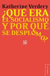 ¿Qué era el socialismo y por qué se desplomó?