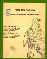 Wild Bird Medicine