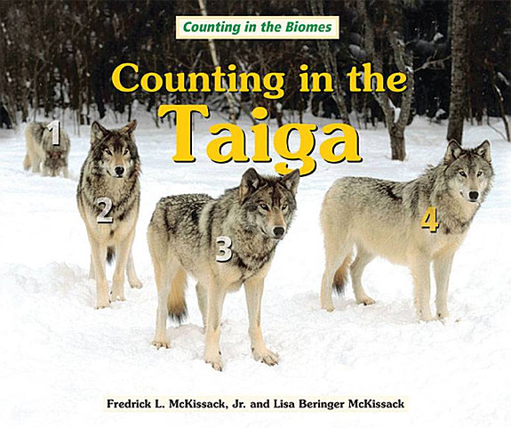 Counting in the Taiga PDF