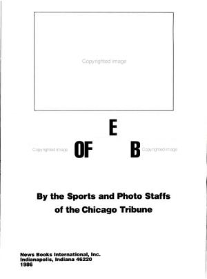 The Year of the Bears PDF
