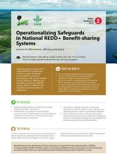 Operationalizing Safeguards in National REDD+ Benefit-sharing Systems: Lessons on effectiveness, efficiency and equity