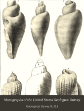 Gasteropoda and Cephalopoda of the Raritan Clays and Greensand Marls of New Jersey
