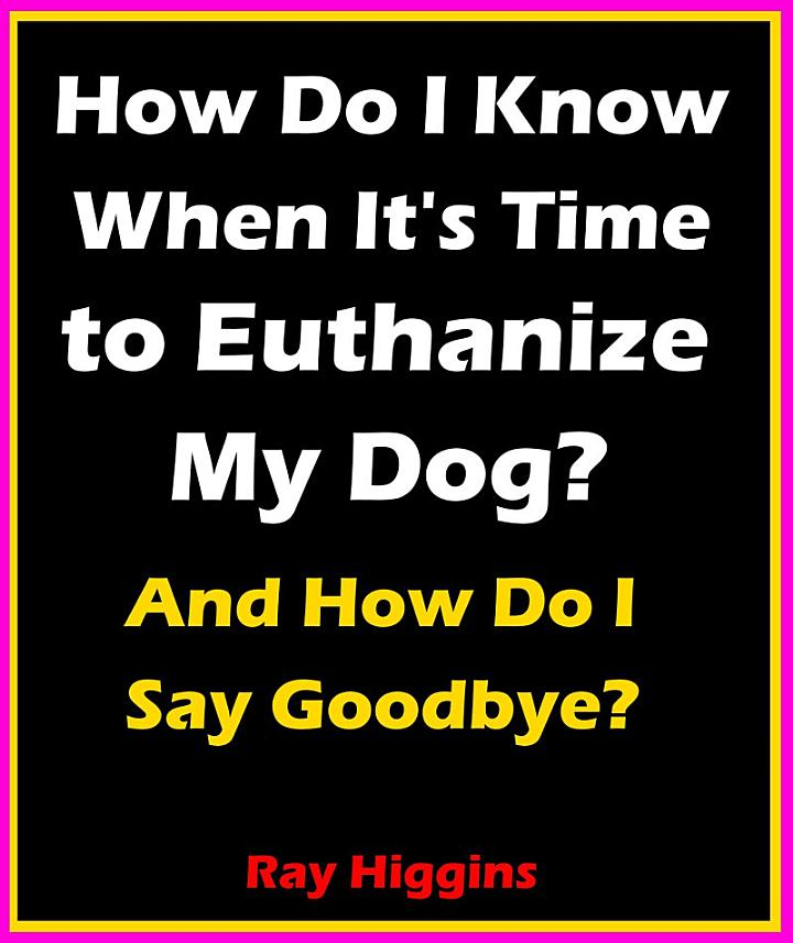 How Do I Know When It's Time to Euthanize My Dog?: How Do I ...