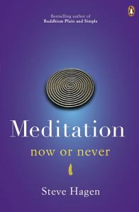 Meditation Now or Never Book