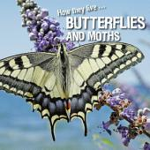 How they live... Butterflies and Moths: Learn All There Is to Know About These Animals!