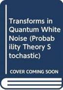 Transforms in Quantum White Noise