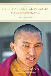 How to Practice Dharma Book