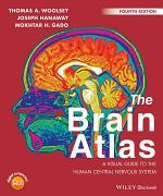 The Brain Atlas