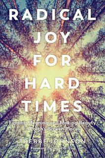 Radical Joy for Hard Times Book