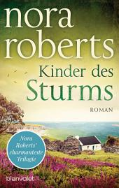 Kinder des Sturms: Roman