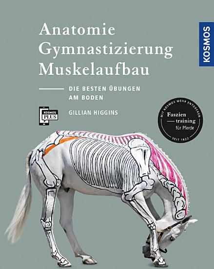 Anatomie  Gymnastizierung  Muskelaufbau PDF