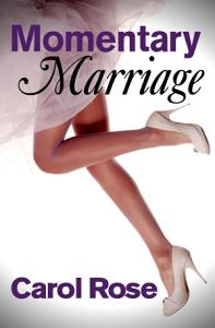 Momentary Marriage Book