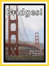 Just Bridges! vol. 1: Big Book of Photographs & Bridge Pictures