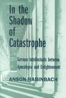In the Shadow of Catastrophe PDF
