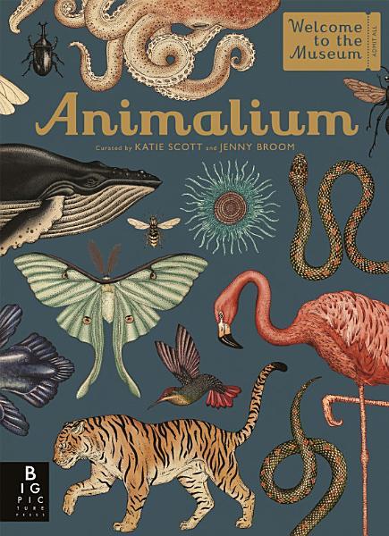 Download Animalium Book