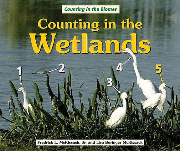 Counting in the Wetlands PDF