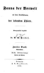 Fauna der vorwelt mit steter beru̇cksichtigung der lebenden thiere: bd. Gliederthiere. 1. abth. Insecten und spinnen