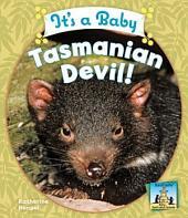 It's a Baby Tasmanian Devil!