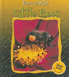 Little Bees Book PDF