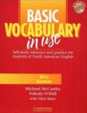 Basic grammar in use PDF