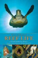 Caribbean Reef Life PDF