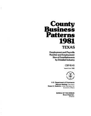 County Business Patterns PDF