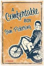 A Comfortable Boy PDF