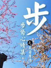 步步驚心續集之天若有情(3)【原創小說】