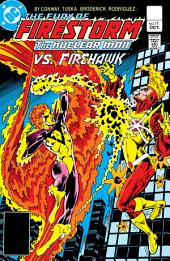 The Fury of Firestorm (1982-) #17