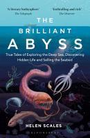 The Brilliant Abyss PDF