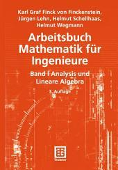 Arbeitsbuch Mathematik für Ingenieure: Band I: Analysis und Lineare Algebra, Ausgabe 3