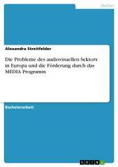 Die Probleme des audiovisuellen Sektors in Europa und die Förderung durch das MEDIA Programm