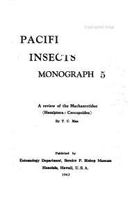 A Review of the Machaerotidae  Hemiptera  Cercopoidea