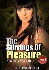 The Stirrings of Pleasure : Erotic Sex Story: (Adults Only Erotica)
